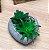 Vaso de Concreto Com Suculenta Coração Cinza Pequeno 9x8cm 4596 - Imagem 1