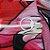 Camisa de Ciclismo Pró Race - Flamingos - Imagem 6