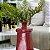 Garrafa Decorativa Vermelha - Imagem 3