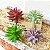 Planta Suculenta Artificial 10x5 Cm Decoração - Imagem 2