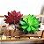 Kit 3 Plantas Suculenta Lótus Artificial 16x10 Cm Decoração - Imagem 4