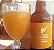 Cerveja Santa Dica Catharina Sour com Cajá e Seriguela 600ml - Imagem 1