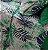 Jogo lençol  Folhas soft - Imagem 3