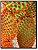 Cacto Opuntia microdasys ssp. Rufida - VERMELHO - Imagem 1