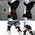 Suporte Joelho Com Molas Power Leg Knee Joint Pads Protetor De Joelho Estabilizador De Força - Imagem 5