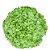 BS ES0078 (125 sementes / 5g) - Imagem 1