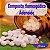 Composto Homeopático Adenoide 24g - Imagem 1