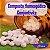 Composto Homeopático Conjuntivite 24g - Imagem 1