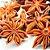 Chá de Anis Estrelado 60 g - Imagem 2