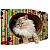 PET GAMES CAT BOX MINI  BORBOLETAS  Arranhador. cama. toca em papelão maciço + catnip - Imagem 1
