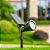 Espeto de  Jardim LED Solar 10w - Verde - Imagem 6