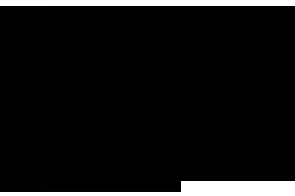 e1d6662069 Nike - JV multimarcas