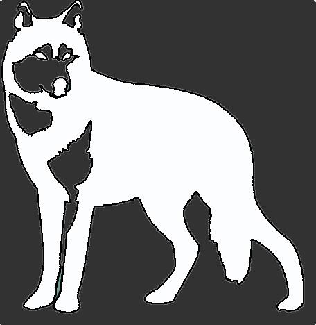 6158b6d82b Lobo Branco Vip - masculino