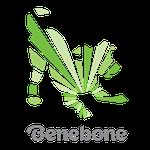 Benebone