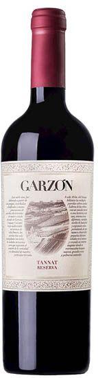 garzon tannat single vineyard 2021