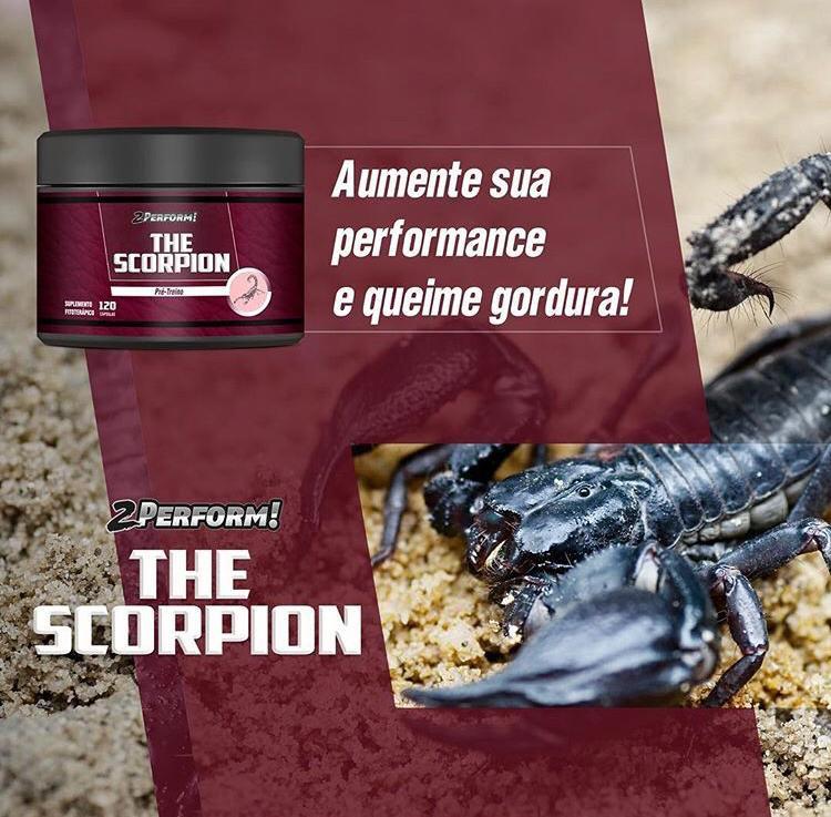 The Scorpion | Pré-Treino