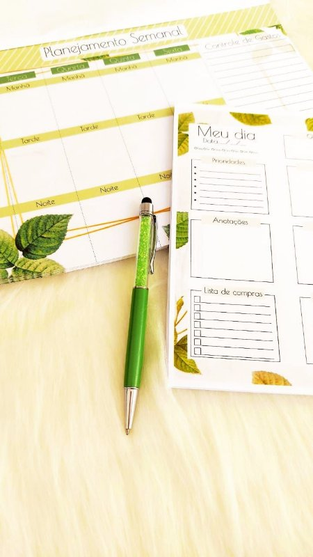 Kit Planejamento anual + Diário - Leaves