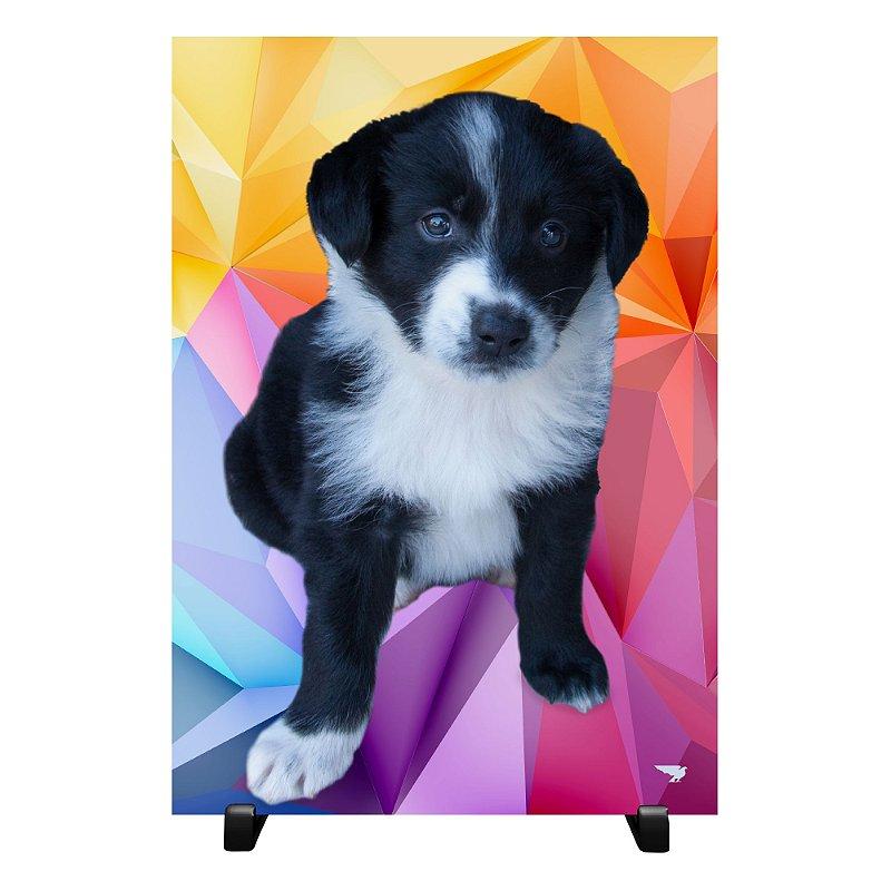 Quadro A4 Decorativo Seu Pet Personalizado