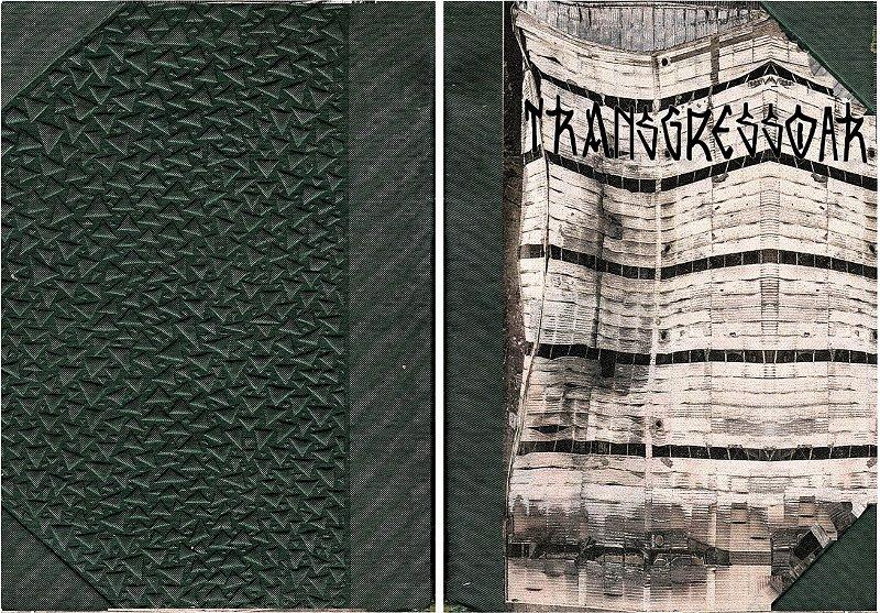 TRANSGRESSOAR 2: transcriação tradução arte comunicação