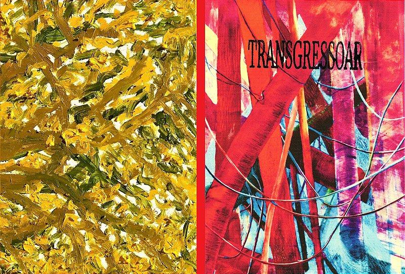 TRANSGRESSOAR: transcriação, tradução e comunicação artística