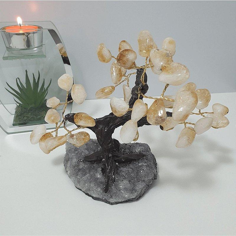 Árvore Citrino com base em Drusa de Cristal - 548 gramas 10cm x 12cm