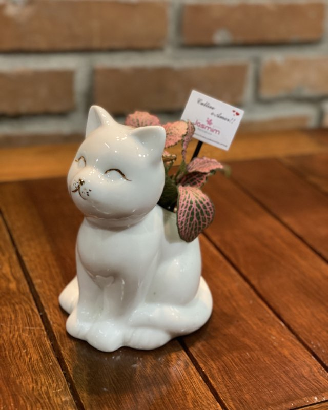 Gato sentado de Louça + Fitônia