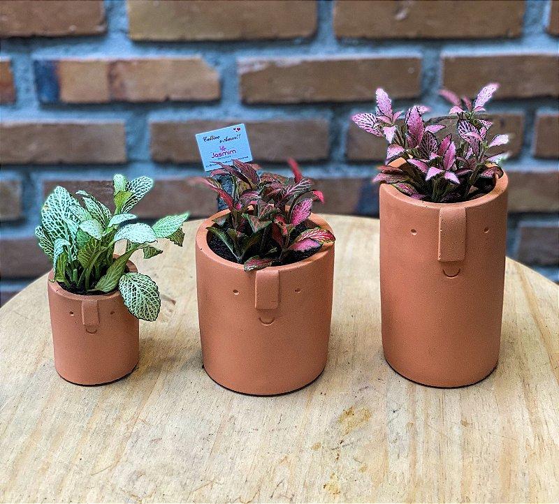Trio de vasos terracota Rosto