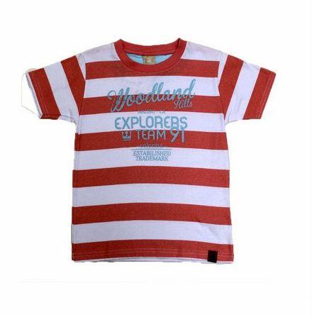 Camisa Gola Redonda Manga Curta Listrada Coloritta 17963