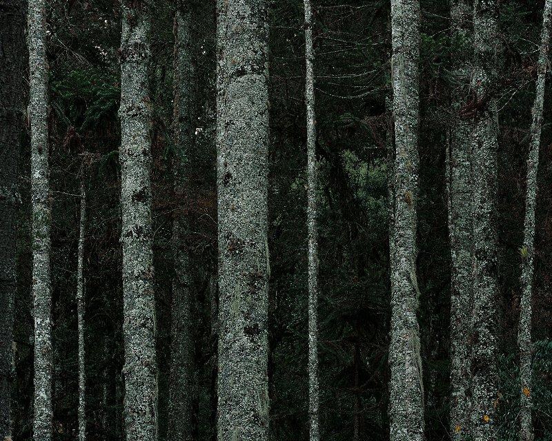 73 Fotografia . (-22.687, -45.493) . Pedro Kok