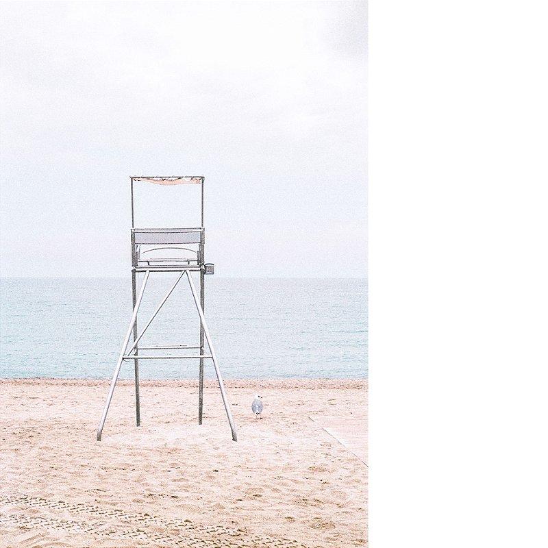 40 Fotografia . A Cadeira e a Gaivota . Fernanda Corsini