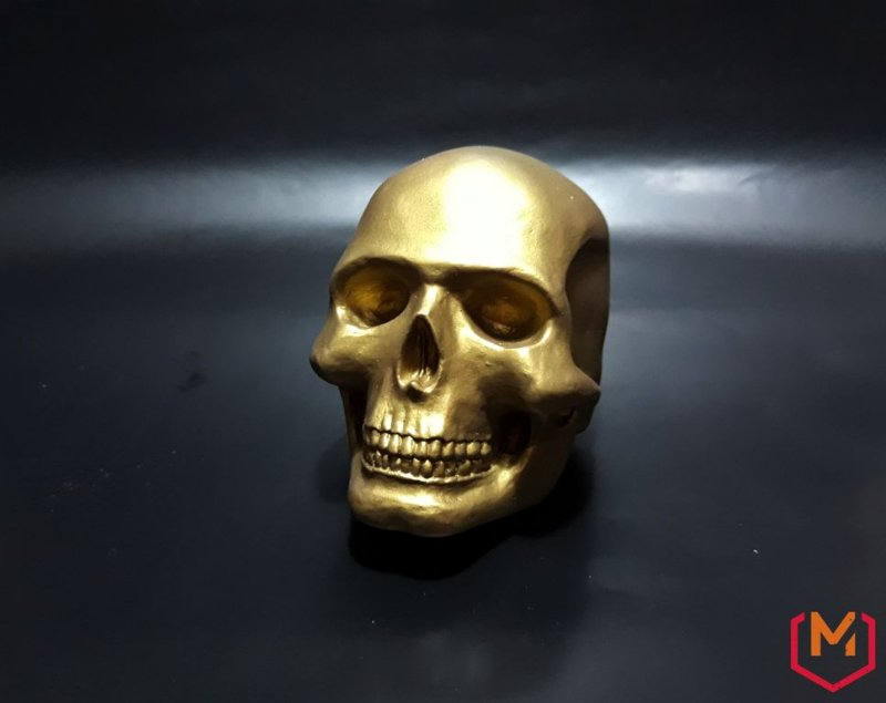 Miniatura personalizável - Crânio humano masculino - 1/3