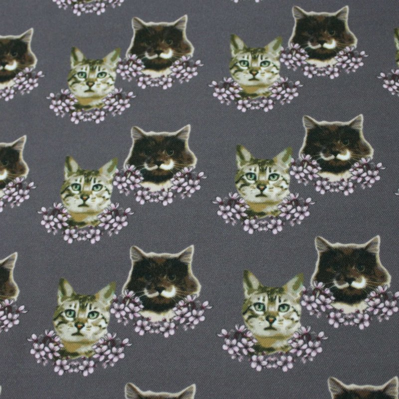 Estampa gatinho