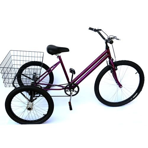 Triciclo Adulto Quadro rebaixado Aro 26