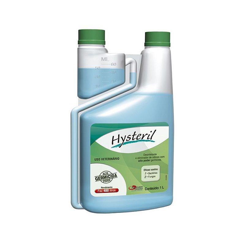 Desinfetante Agener União Hysteril 1lt