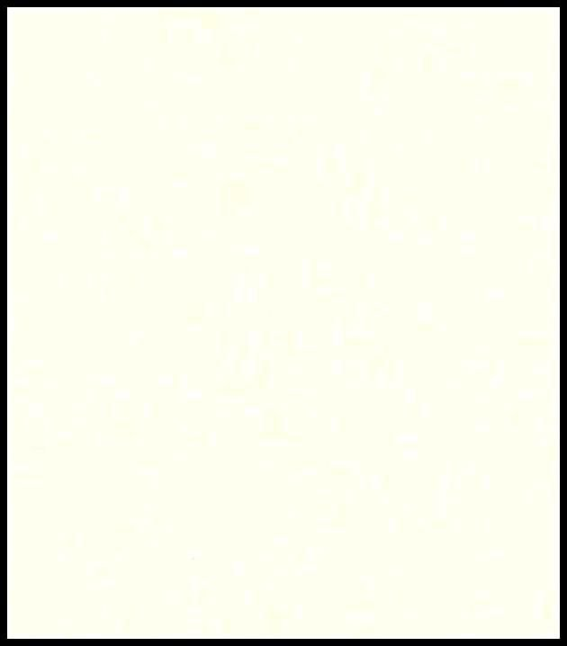 Papel de Parede Unis e Rayues 12113200