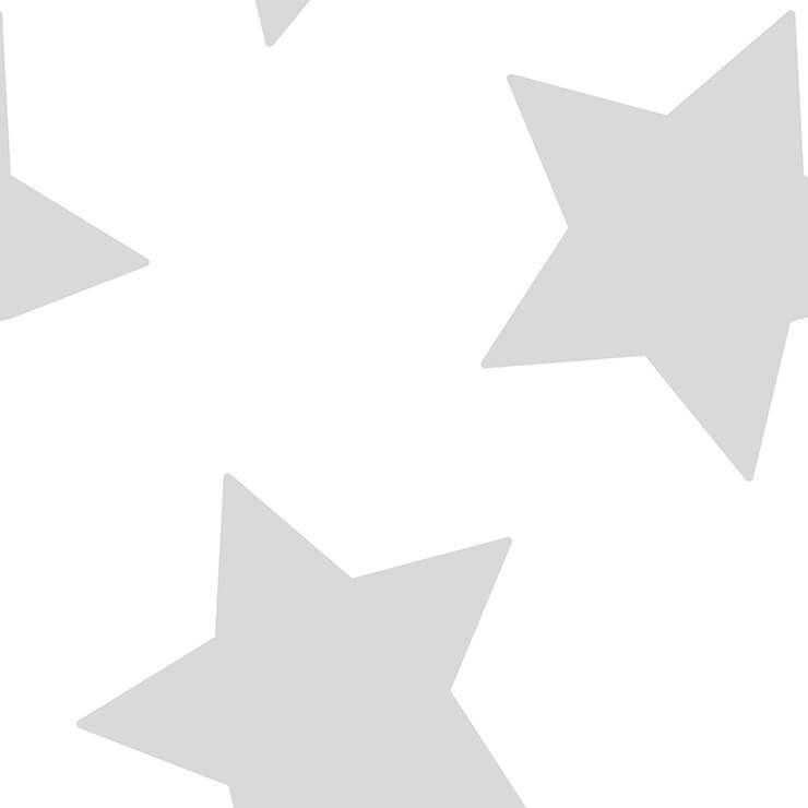 Papel De Parede Renascer Estrela Grande Prata 6215