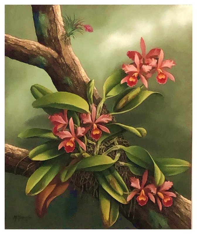 Quadro Pintura Artística 154 - Mara Maynardes óleo sobre tela 60 X 50 Flores de setembro sem moldura