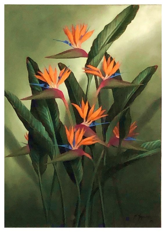 Quadro Pintura Artística 156 - Mara Maynardes óleo sobre tela 70 X 50 Strelitzia sem moldura