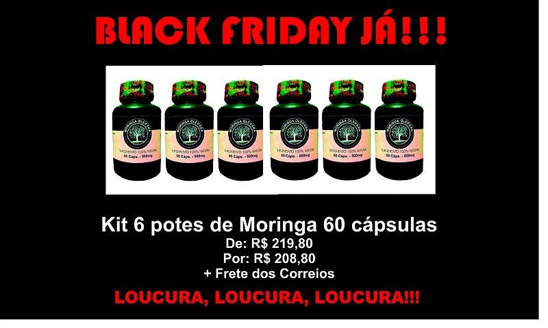 KIT 6 MORINGAS OLEÍFERAS 60 CAPS