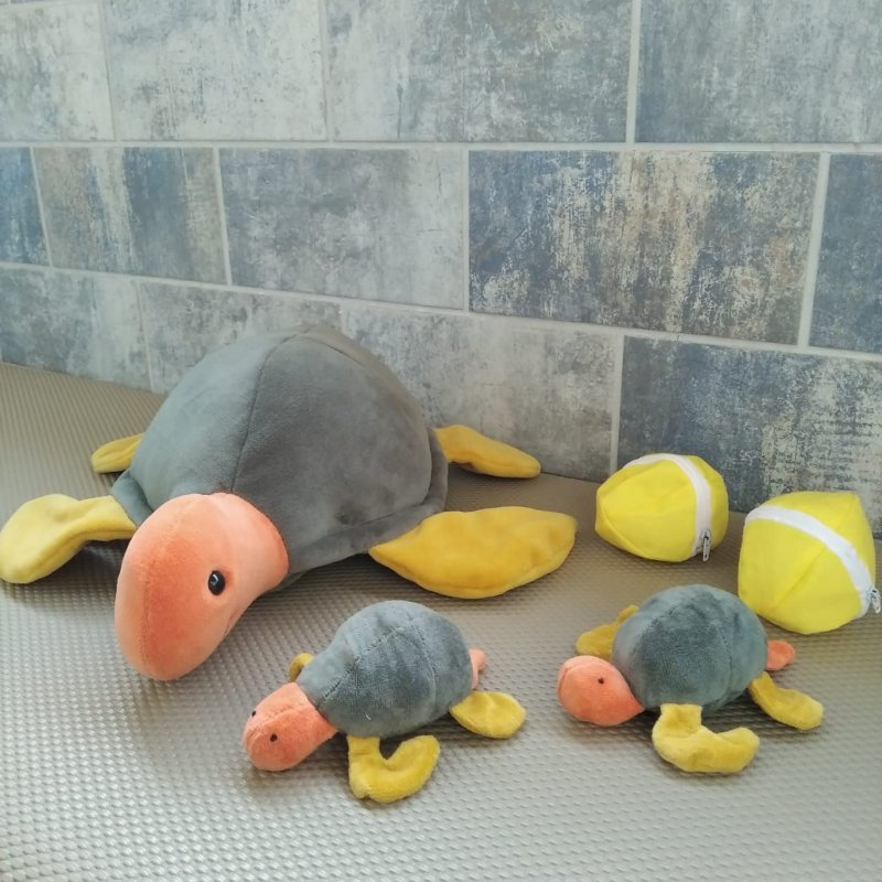 Tartaruga Marina Grávida com Filhotes