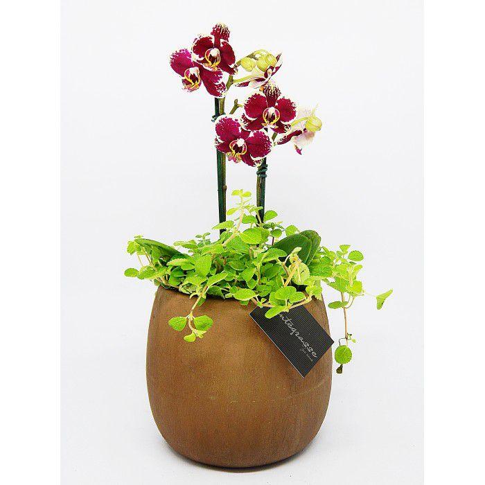 Cachepot bojudo médio com orquídea bordô