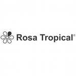 ROSA TROPICAL