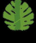 Aroma Produtos Naturais da Amazônia