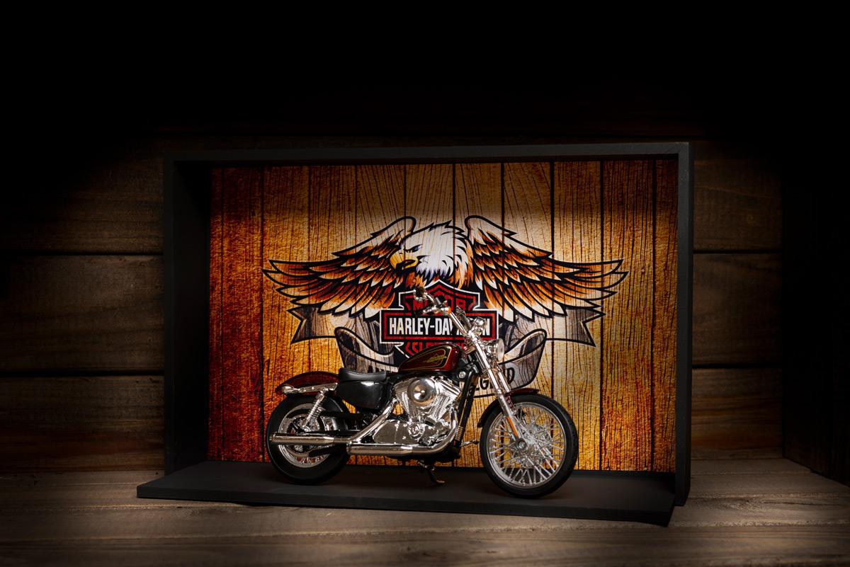 presente para motociclista Harley-Davidson Miniatura e Expositor