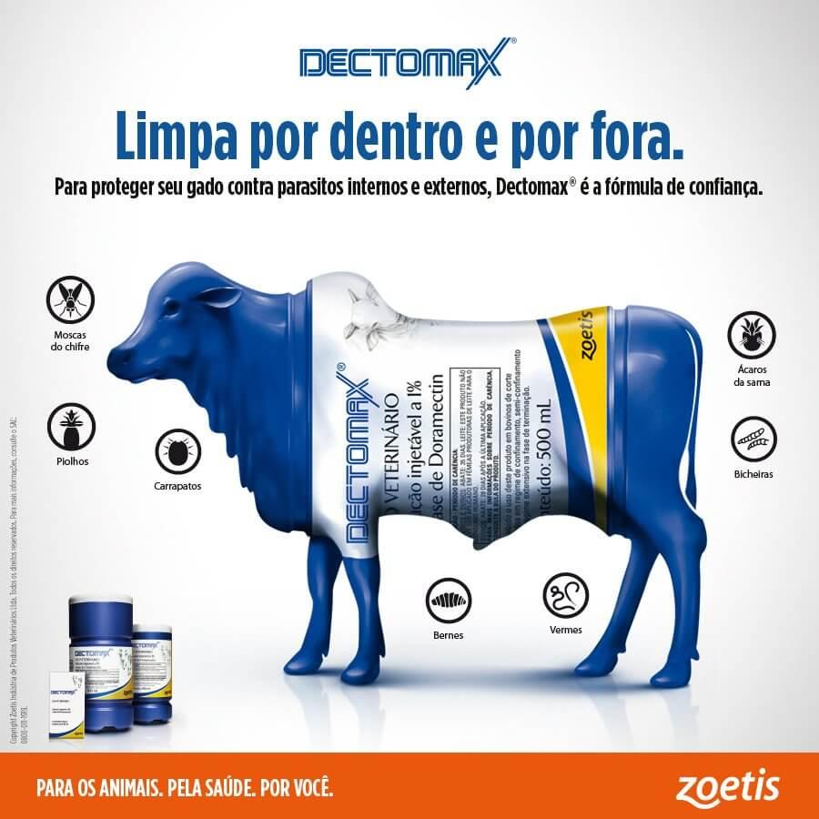 Dectomax - Limpa por dentro e por fora.